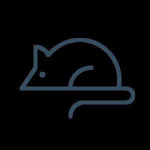 Icon Animal Model Assessement